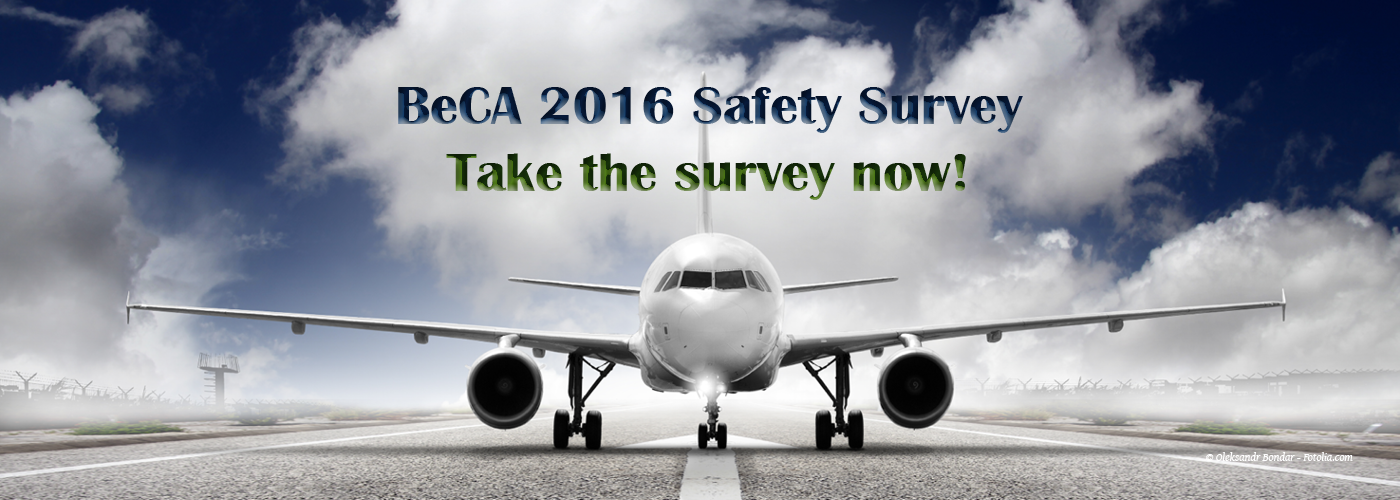 Safety Survey 20165